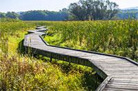 New Jersey Appalachian Trail Section